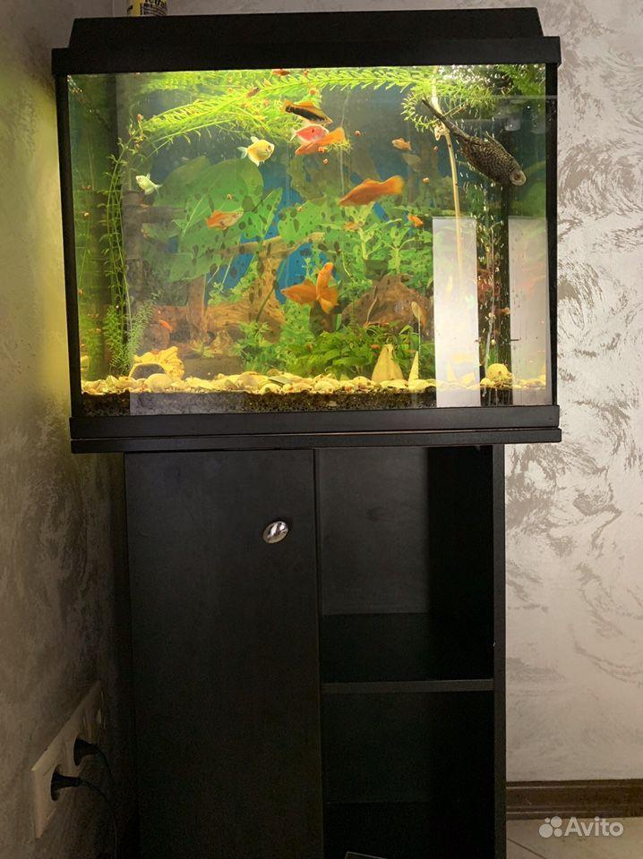 Аквариум с рыбками на тумбе купить на Зозу.ру - фотография № 2