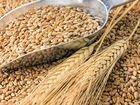 Зерно:пшеница и ячмень