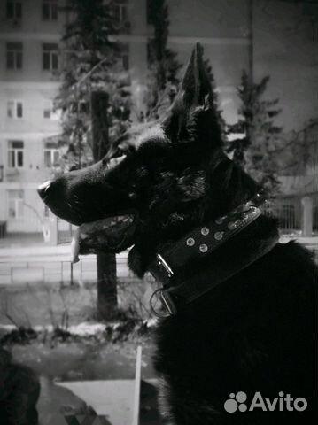 Вео Вязка купить на Зозу.ру - фотография № 1