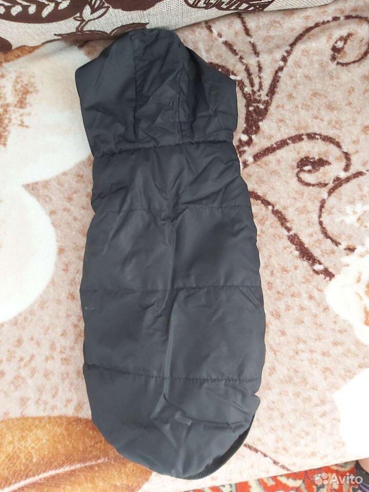 Одежда на собачку  89527467196 купить 6