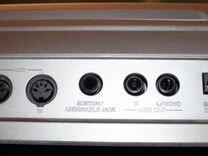 Профессиональный синтезатор Casio WK-1800